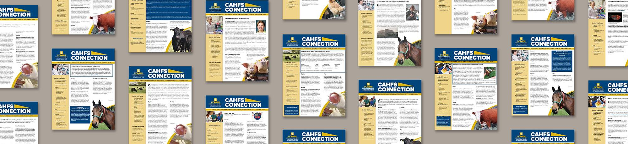 CAHFS Connection Newsletter Archive