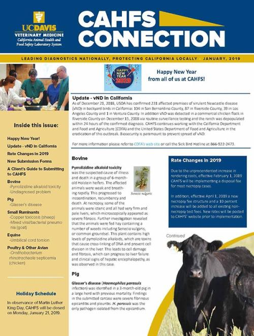CAHFS Connection Newsletter January 2019