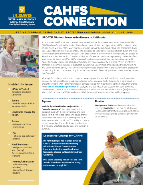 CAHFS Connection Newsletter June 2019
