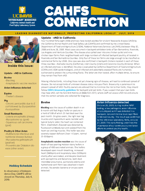 CAHFS Connection Newsletter July 2019