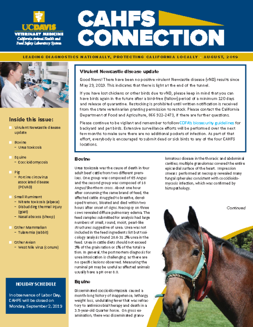 CAHFS Connection Newsletter August 2019