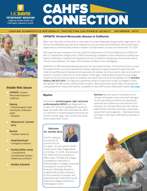 CAHFS Connection Newsletter December 2019